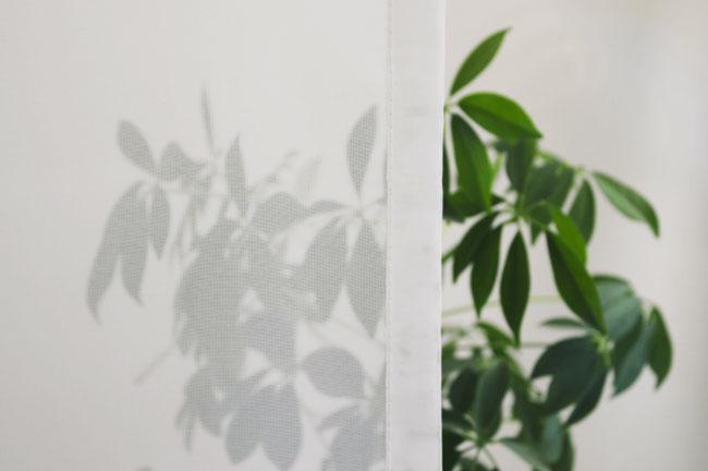 Cafehausgardine transparents